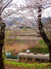 05みゆき公園s★DSC00813.jpg