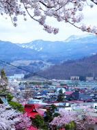12月岡公園散策路から眺望s★DSC00585.jpg