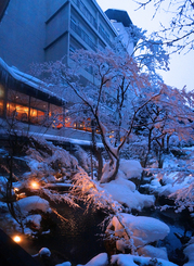 25月岡H雪の庭園と全景☆DSC03161合角s.jpg