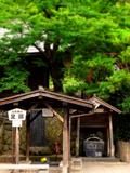 102足湯鶴の休み石★DSC08459.JPG